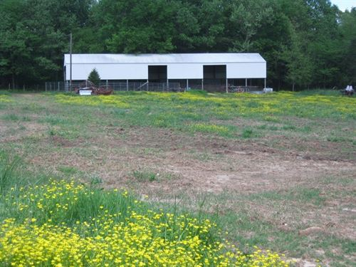Ranch, Farm Cattle Horses Arkansas : Pocahontas : Randolph County : Arkansas
