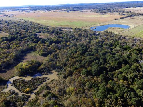 Bear Hunting and a Creek : Kinta : Latimer County : Oklahoma