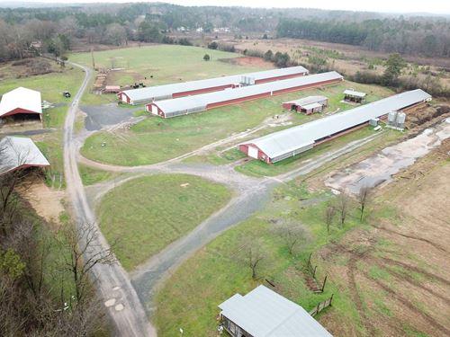 North Spring Creek Farm : Chatsworth : Murray County : Georgia