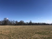Beautiful Farm Land 65 Acres Dodd : Shirley : Van Buren County : Arkansas