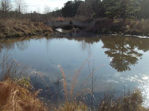 Sardis Lake, Hunting, Fishing : Sardis : Panola County : Mississippi