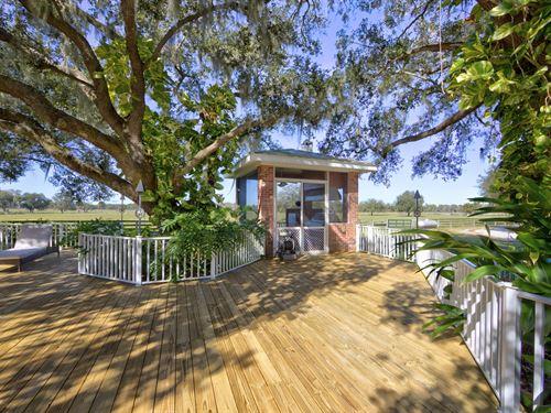 Mossy Back Ranch : Myakka City : Manatee County : Florida