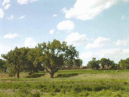 Red Wall Ranch : Kaycee : Johnson County : Wyoming