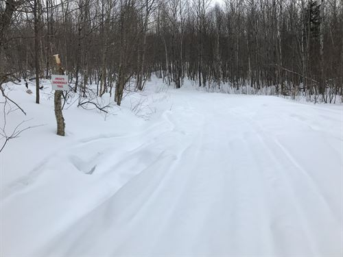 Recreational Land Lot Northern : Mount Chase : Penobscot County : Maine