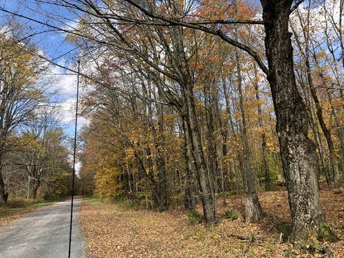 Maple Meadows : Osceola : Lewis County : New York