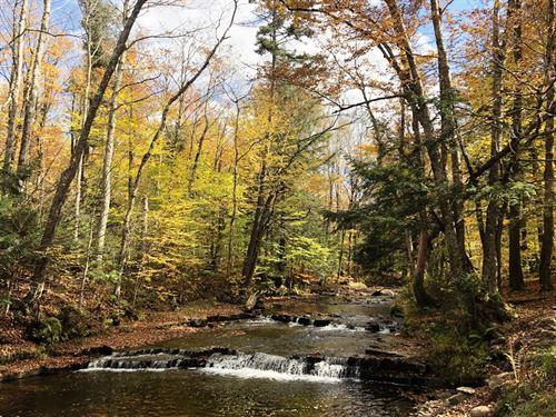 Prince Brook Falls : Osceola : Lewis County : New York