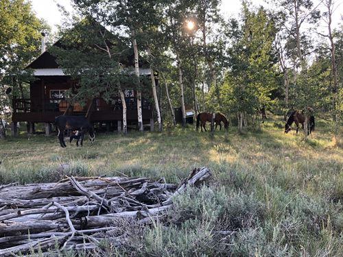 Franz Hunting Cabin : Gunnison : Saguache County : Colorado