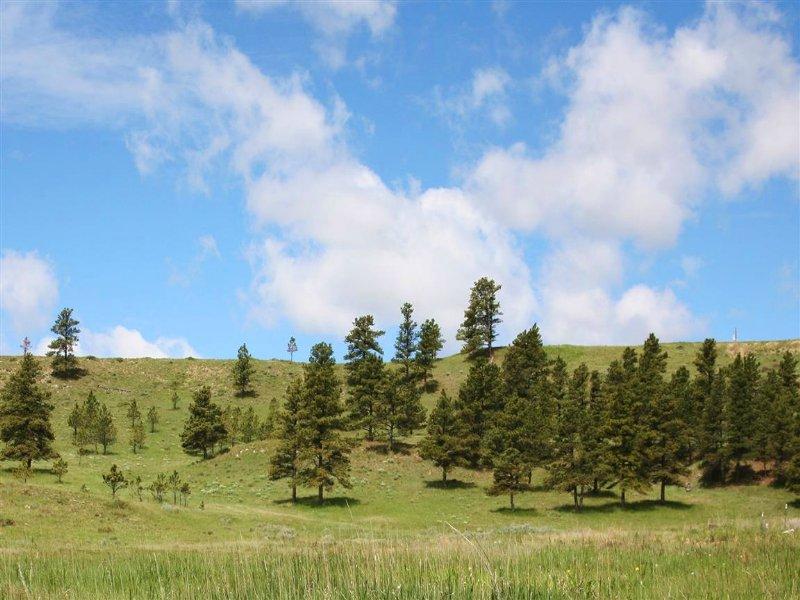 Tower Ridge Estates : Hulett : Crook County : Wyoming
