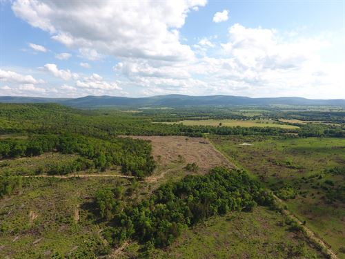 173 Acre Timber Investment Hunting : Poteau : Le Flore County : Oklahoma