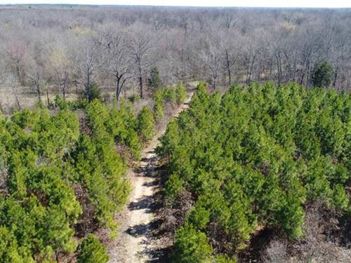 Hunting Land With 2 Ponds : Clarksville : Red River County : Texas