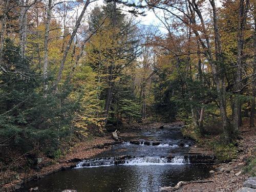Prince Brook Fishing Camp Spot : Osceola : Lewis County : New York