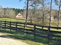 Horse Farm And Home : Mount Hermon : Washington Parish : Louisiana