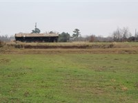 Country Homesite Bowie County : De Kalb : Bowie County : Texas