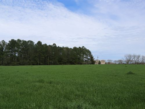 Beautiful Property In The Headland : Headland : Henry County : Alabama