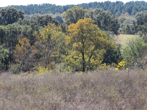 Residential Development Lots Land : Lane : Atoka County : Oklahoma