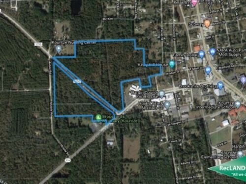 62.4 Ac, Wooded Tract For Developm : Kountze : Hardin County : Texas