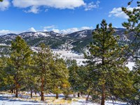 Wooded Mountain Land With Utilities : Westcliffe : Custer County : Colorado