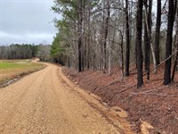 Land, McKnight Rd, Ackerman, MS : Ackerman : Choctaw County : Mississippi