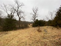 Nw MO 85 Acres For Sale : Gallatin : Daviess County : Missouri