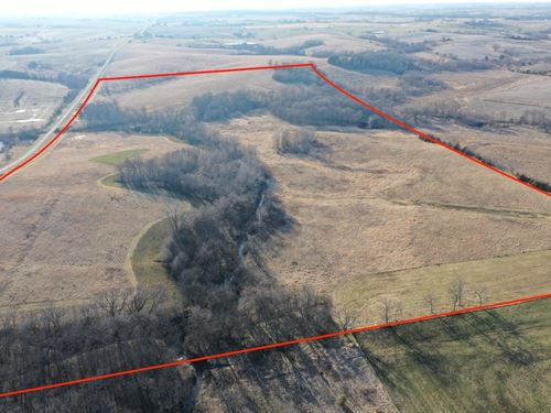 80-Acre Land Southern Iowa Hunting : Mount Ayr : Ringgold County : Iowa