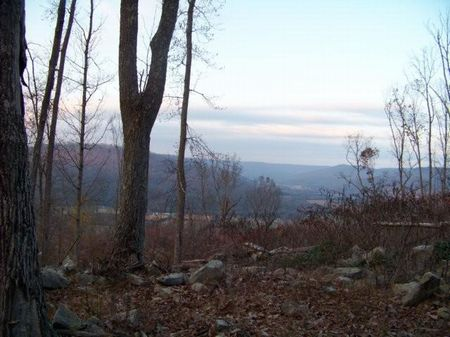 100 Acres Near Tn River : South Pittsburg : Marion County : Tennessee