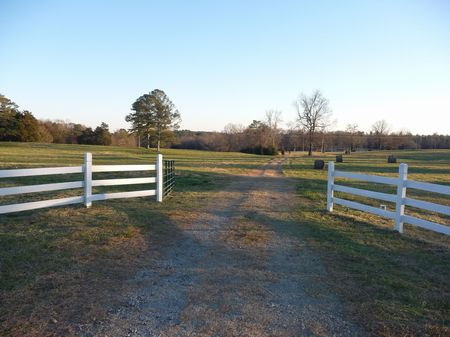 crawfordville mature singles Browse crawfordville ga real estate listings to find homes for sale, condos, commercial property, and other crawfordville to harvest mature.