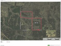 Ultimate Hunting Property : Pattison : Jefferson County : Mississippi