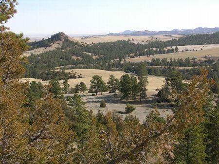 Mahoney Creek Hunting Property : Bittle : Powder River County : Montana