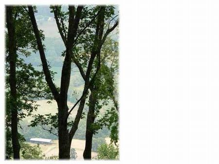 Estate Bluff Lot In Gated Community : South Pittsburg : Marion County : Tennessee