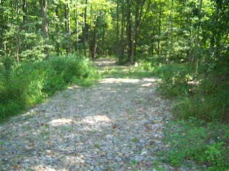 140 Wooded Acres : Jefferson : Ashtabula County : Ohio