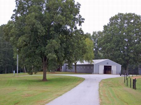 32+ac Professional Horse Farm : Mansfield : Morgan County : Georgia