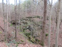 Meigs County Hunting Land Timber : Racine : Meigs County : Ohio