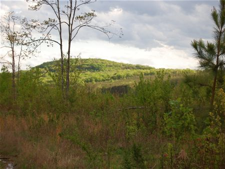 Signal Mountain - Lot 8 : Signal Mountain : Sequatchie County : Tennessee