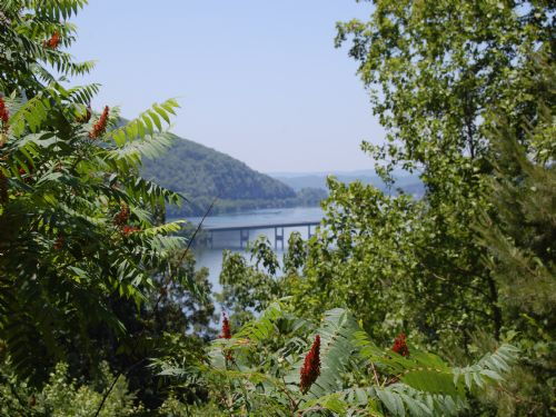 Morgan Point - Lot 2 : Chattanooga : Marion County : Tennessee