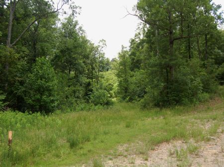 Campbell Road - Lot 16 : Keith Springs : Franklin County : Tennessee