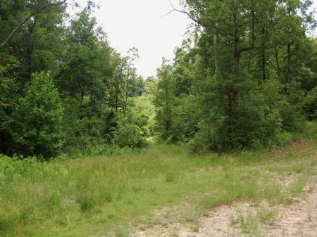 Campbell Road - Lot 18 : Keith Springs : Franklin County : Tennessee