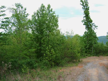 Winchester South - Lot 3 : Keith Springs : Franklin County : Tennessee