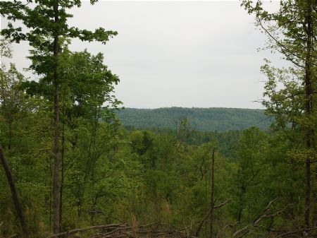 Winchester South - Lot 14 : Keith Springs : Franklin County : Tennessee