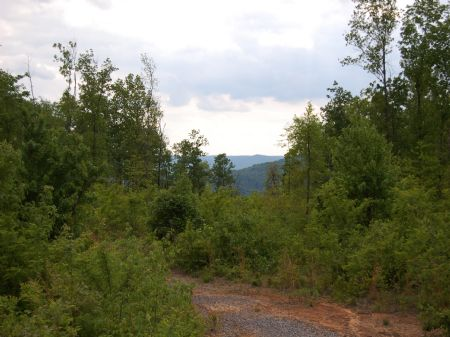 Rock Springs - Lot 20 : Keith Springs : Franklin County : Tennessee
