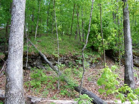 Rock Springs - Lot 21 : Keith Springs : Franklin County : Tennessee