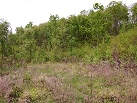 Rock Springs - Lot 22 : Keith Springs : Franklin County : Tennessee