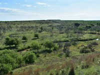 220 Acres Baylor Co, Excellent Hun : Seymour : Baylor County : Texas