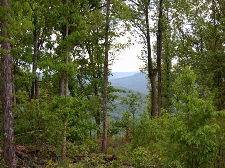 Rock Springs - Lot 28 : Keith Springs : Franklin County : Tennessee