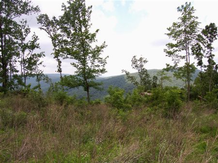 Iron Gap Road - Lot 1 : Keith Springs : Franklin County : Tennessee