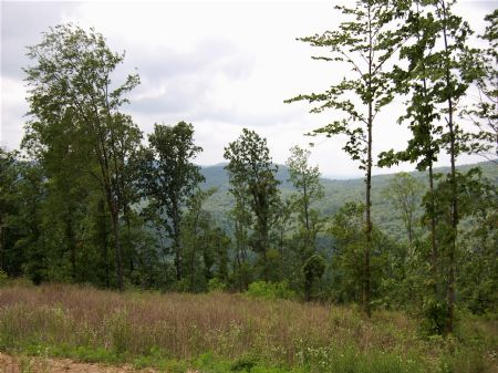 Iron Gap Road - Lot 2 : Keith Springs : Franklin County : Tennessee