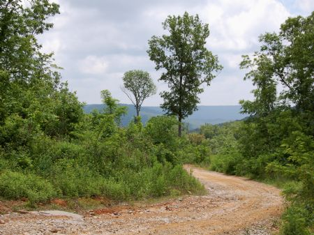 Iron Gap Road - Lot 4 : Keith Springs : Franklin County : Tennessee