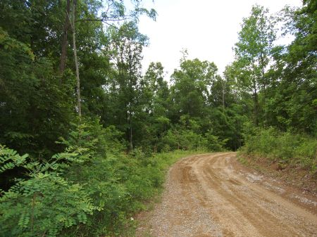 Iron Gap Road - Lot 15 : Keith Springs : Franklin County : Tennessee