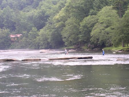 Toccoa River : Blue Ridge : Fannin County : Georgia