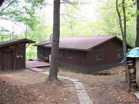 Nice Cabin On Private Pond : Branch : Mason County : Michigan