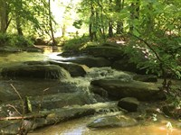 Turkey Falls : Ware Shoals : Laurens County : South Carolina